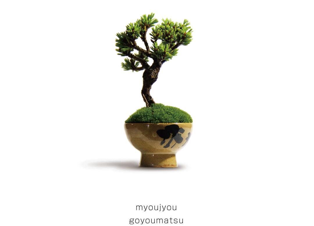 myoujyou goyoumatsu